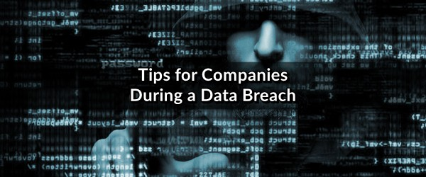 data breach tips companies